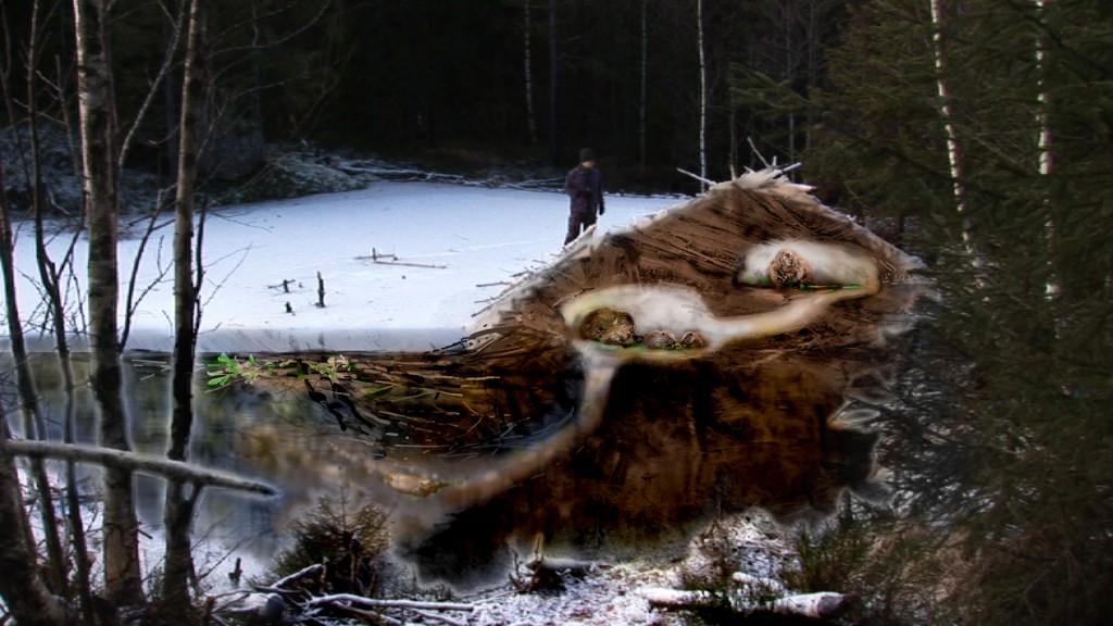 Manipulert bilde for å vise oppbyggingen av en beverhytte. Foto Arve Henriksen
